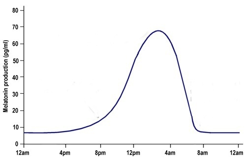 The graph of People who working at night